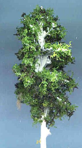 Miniature Landscaping Trees Page 2 In 1 Quot Scale From